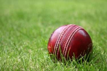 Cricket betting in South Africa